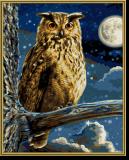 Malen nach Zahlen - Der Uhu - Herrscher der Nacht